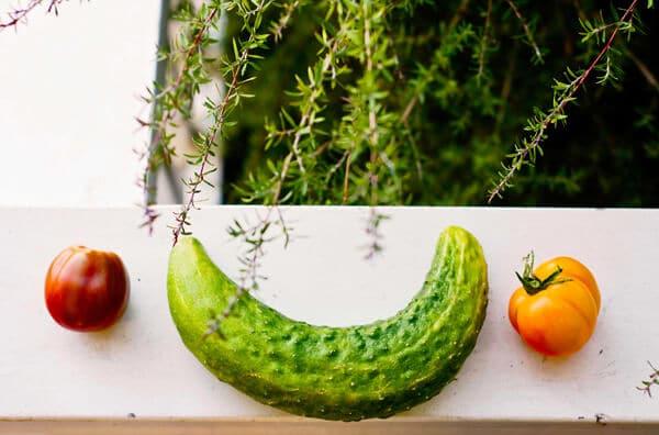 nutricion_ecologica_una_moda