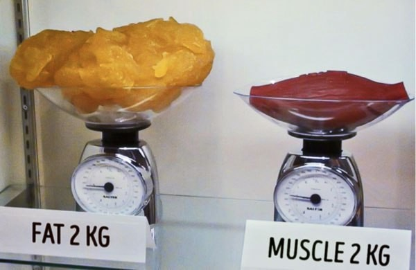 grasa pesa menos que el músculo