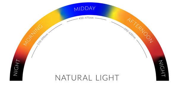 luz natural durante el día