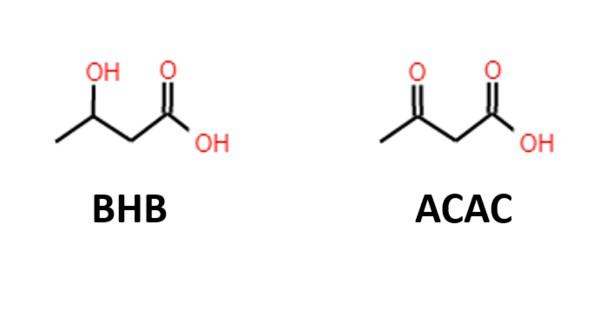 BHB_ACAC formula errores por los que no entras en cetosis
