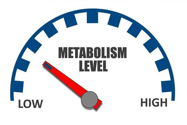 como-acelerar-el-metabolismo