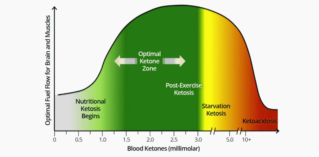 nivel óptimo de cetosis