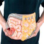 Cómo mejorar la digestión con estos 10 alimentos