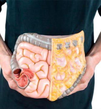 10-superalimentos-para-mejorar-la-digestion