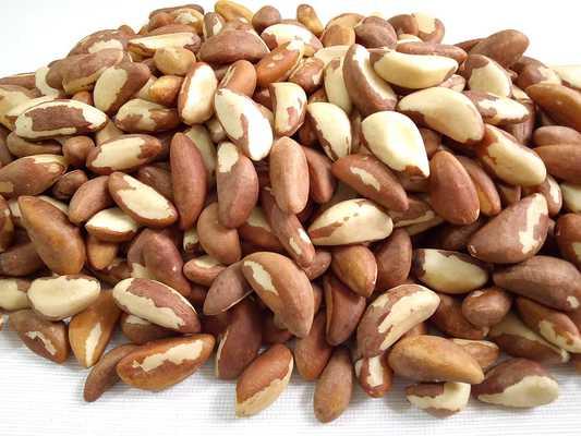 nueces de brasil guia de los frutos secos