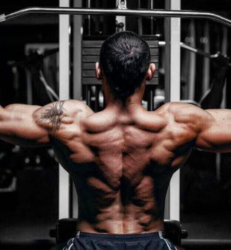 mejores ejercicios para espalda dominada