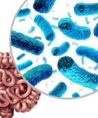 Cómo mejorar la microbiota