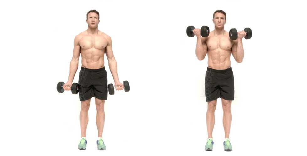 ejercicios con pesas: curl